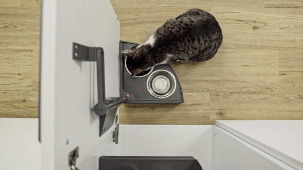 Futterstation Katze